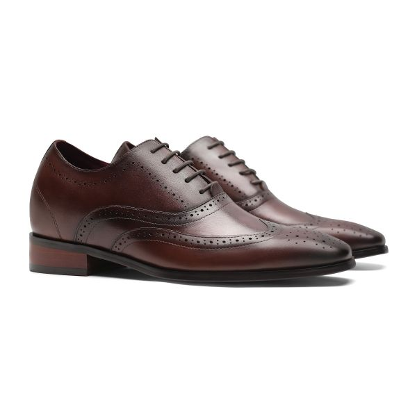 Daddy's Wingtip Oxford - Dark Cocoa Brown
