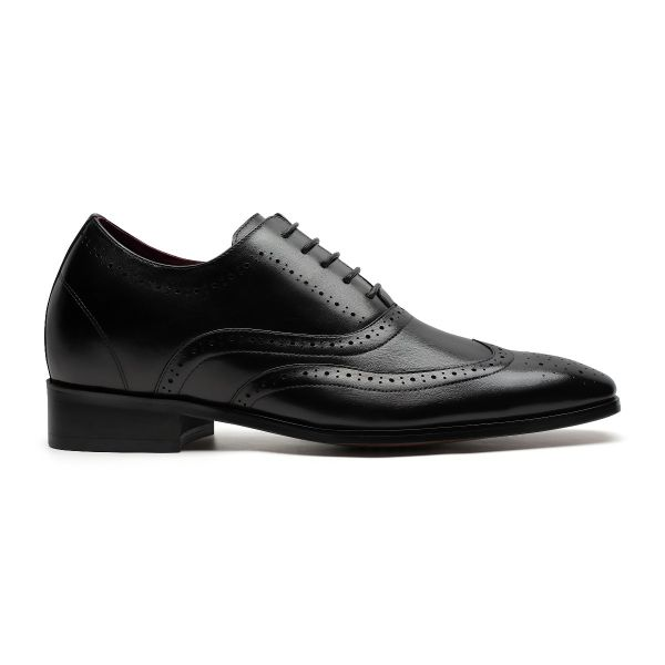 Daddy's Wingtip Oxford