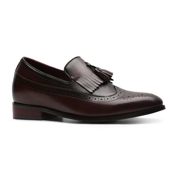 Day and Night Tassel Loafers