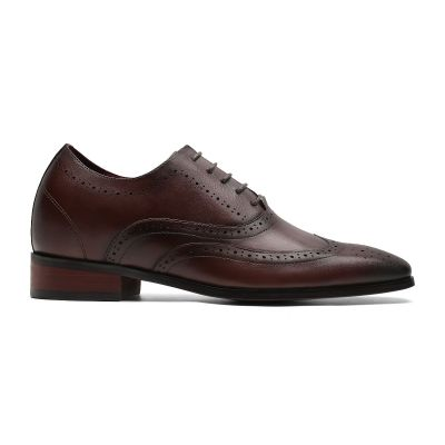 Daddy's Wingtip Oxford - Dark Brown
